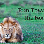 run-towards-the-roar